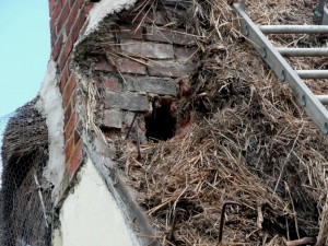 TAS Chimney Condition
